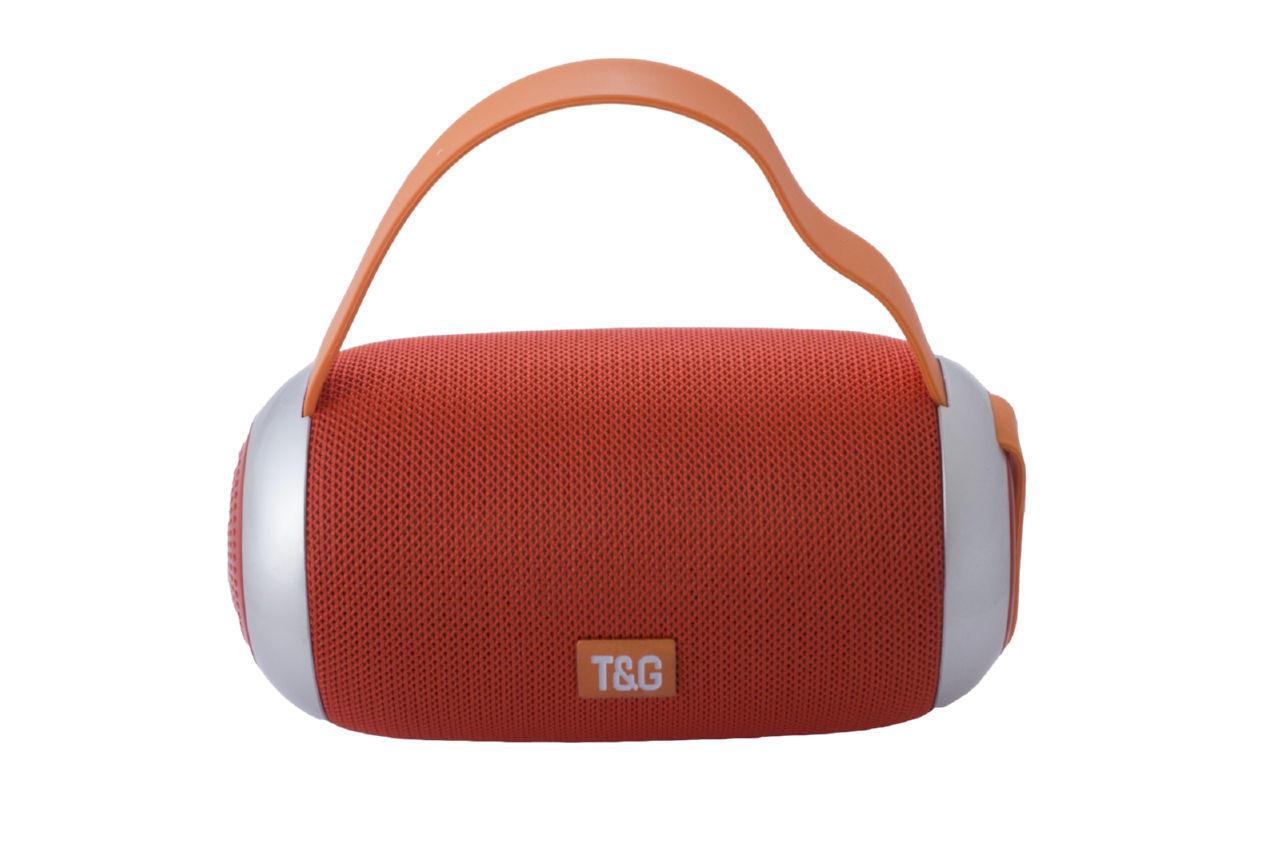 Колонка портативная T&G TG-112 1