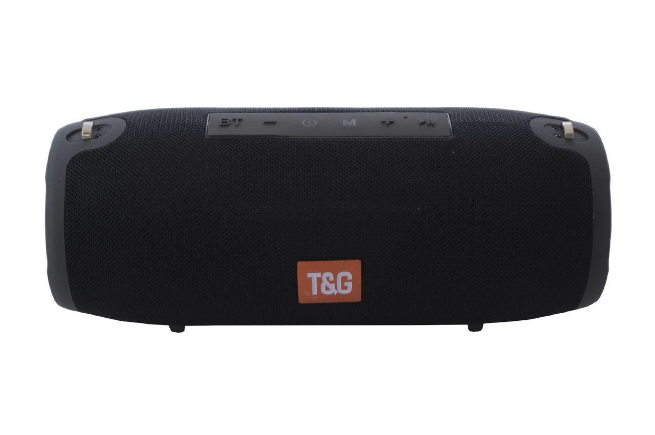 Колонка портативная T&G TG-118 1