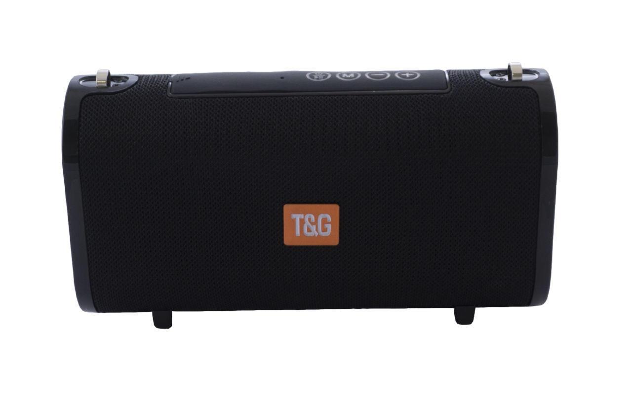 Колонка портативная T&G TG-123 1