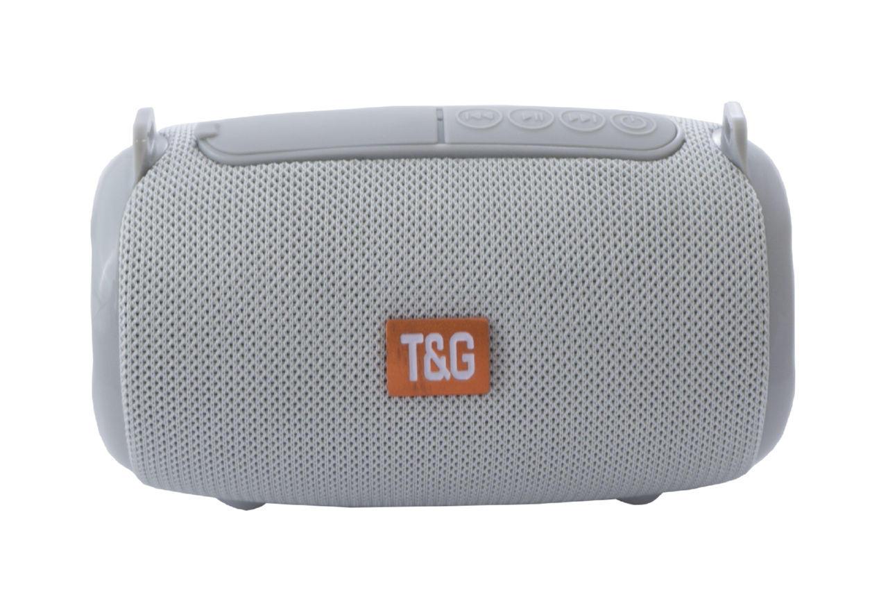 Колонка портативная T&G TG-533 1