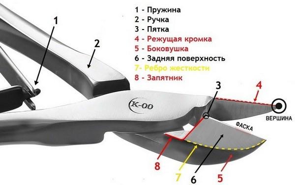 Конструкция и устройство бокорезов