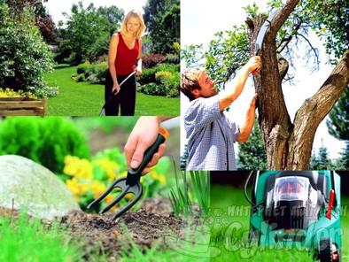 Товары для дачи сада огорода цена в интернет магазине Цилиндр